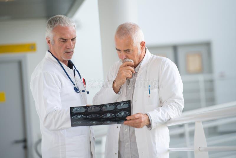 Team artsen die in bureau werken royalty-vrije stock foto