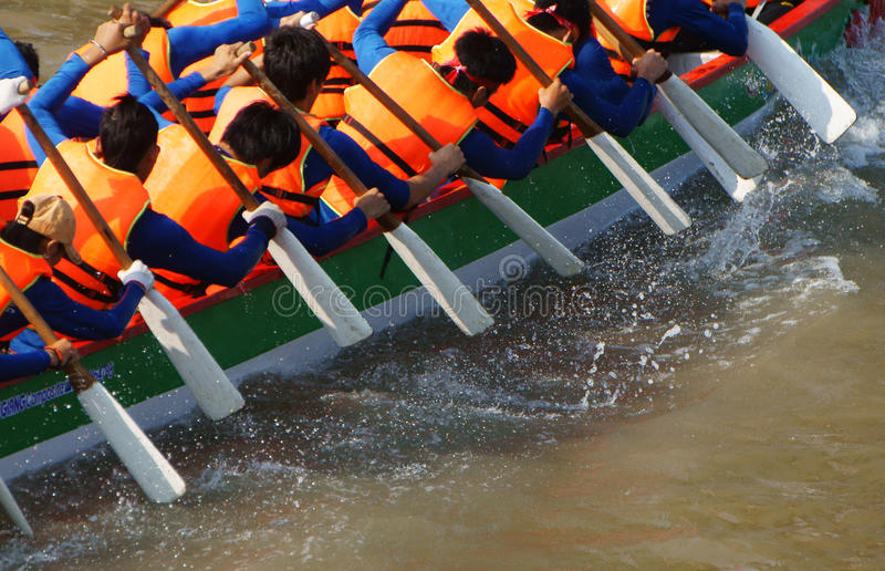 Team building activity, rowing dragon boat race royalty free stock images