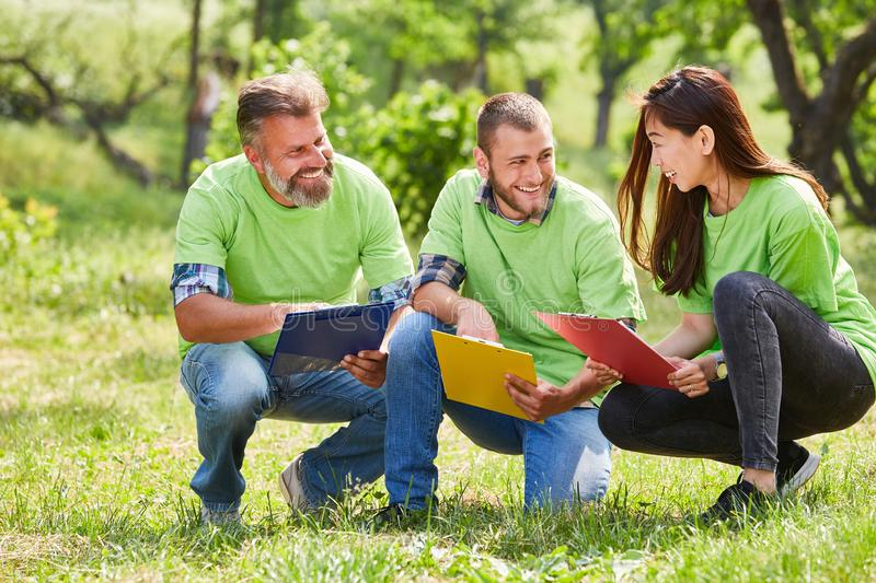 Team conservationists at a meeting. Three conservationists as volunteers with clipboard are planning a conservation project stock image