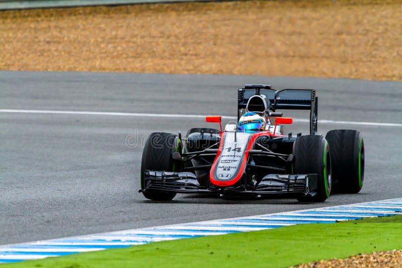 Team McLaren Honda F1, Fernando Alonso, 2015 royaltyfri foto