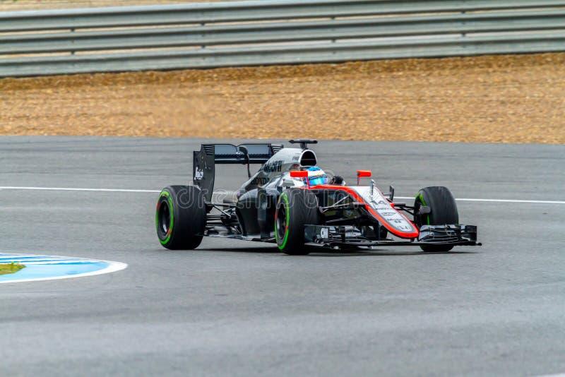 Team McLaren Honda F1, Fernando Alonso, 2015 royaltyfria foton