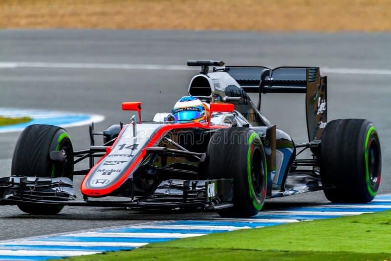 Team McLaren Honda F1, Fernando Alonso, 2015 fotos de archivo