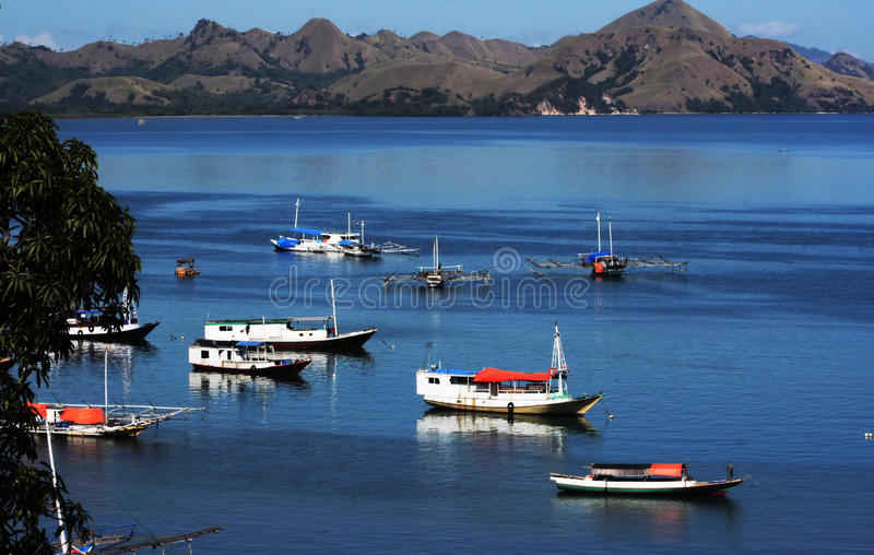 Download TEAM WORK stock image. Image of fishing, mountains, scenery - 10696237