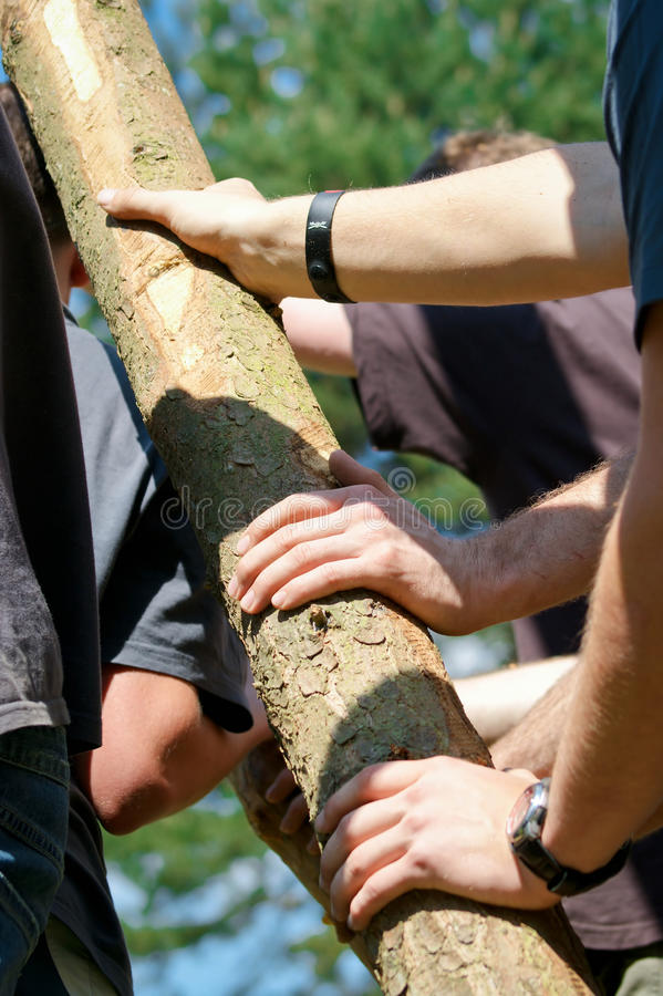 Download Team Work Royalty Free Stock Images - Image: 25070419