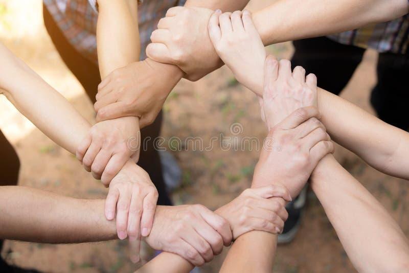 Team Work Concept: Grupo de mãos diversas junto Proces transversal imagem de stock royalty free