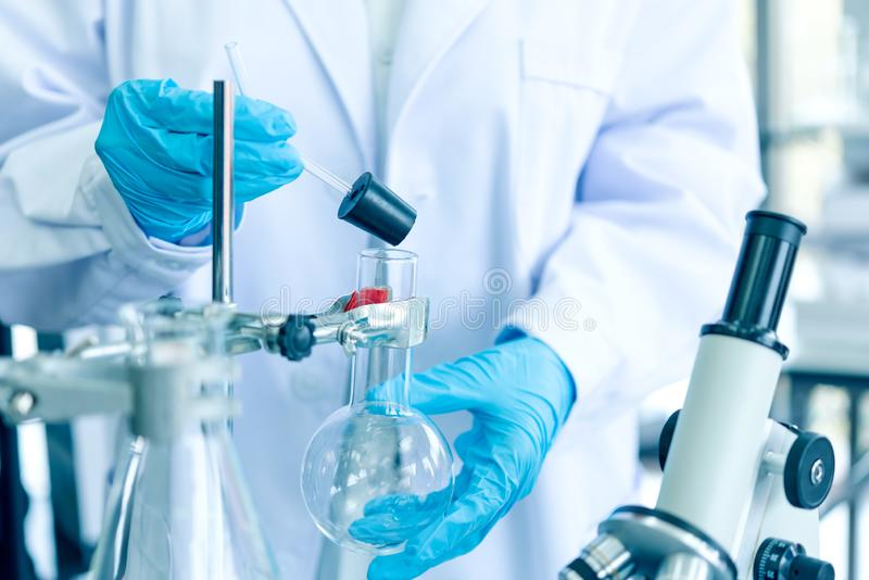 Team work Scientists analyzing study data and evaluating microscope success for work shop. Health care researchers doing some research with dropper chemical royalty free stock photo
