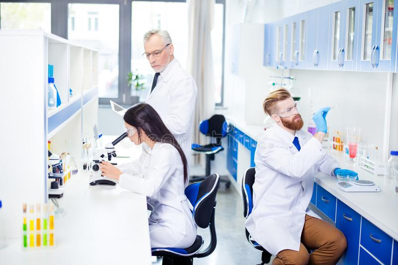 Teambuilding concept. Three workers of laboratory are ckecking t royalty free stock photos