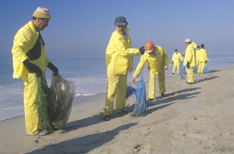 Teams of environmental workers organizing cleanup efforts of the oils spill in Huntington Beach, California royalty free stock images