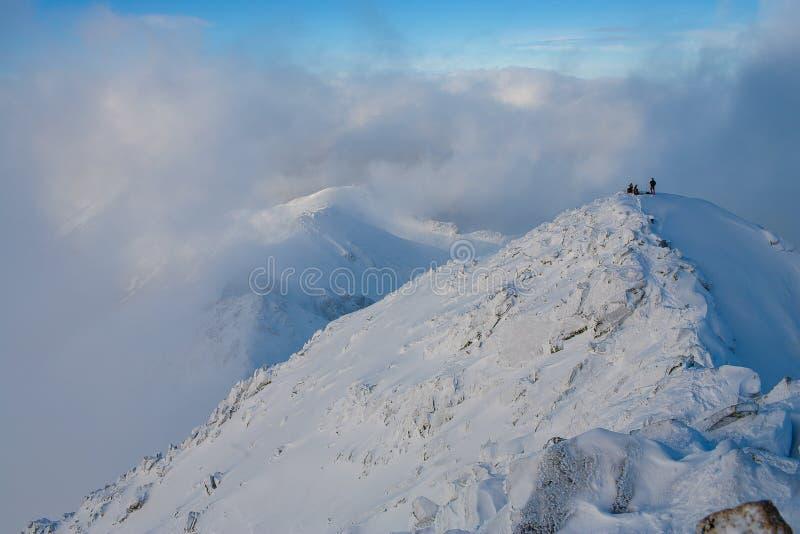 Teamwork i alpinism bergsbestigning Travers av berget royaltyfri foto