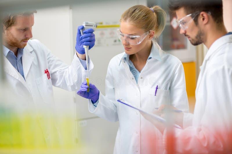 Teamwork im chemischen Labor setzte Probe der Flüssigkeit in Testpipette ein stockfoto