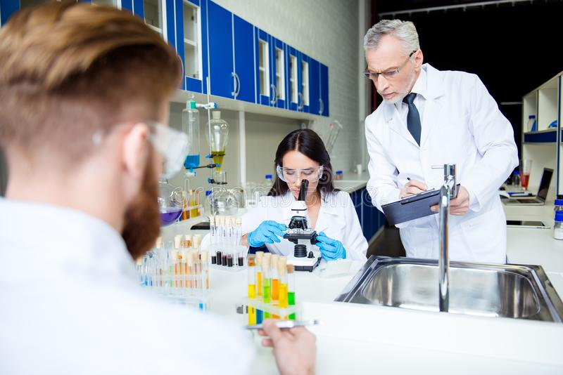 Teamwork and teambuilding concept. A group of three scientists i stock images