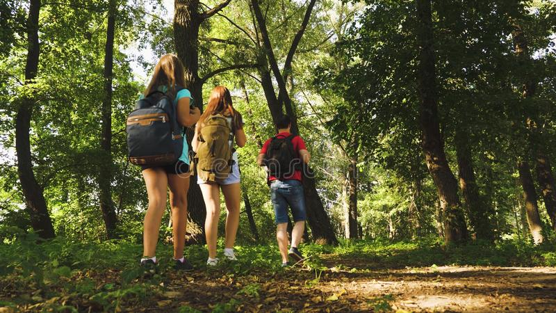 Teamwork travelers. dad and daughters, children travel in park in summer. Family on vacation travels in forest. friends. Tourists go camping in forest. People royalty free stock photo