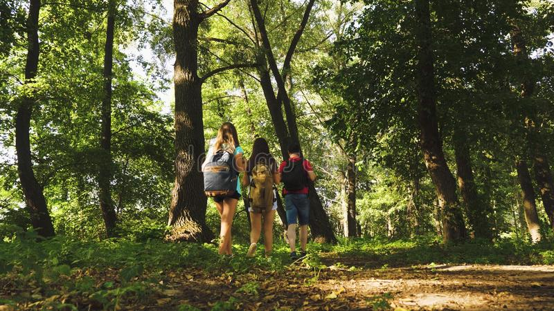 Teamwork travelers. dad and daughters, children travel in park in summer. Family on vacation travels in forest. friends. Tourists go camping in forest. People royalty free stock images