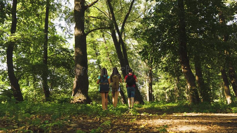 Teamwork travelers. dad and daughters, children travel in park in summer. Family on vacation travels in forest. friends. Tourists go camping in forest. People royalty free stock photography