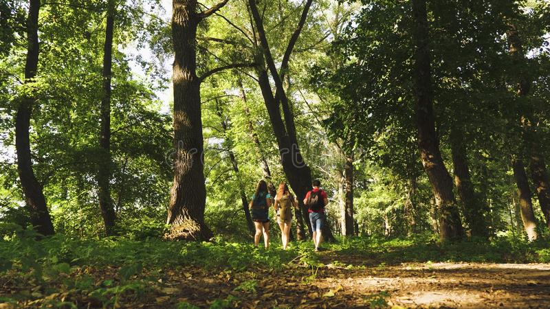 Teamwork travelers. dad and daughters, children travel in park in summer. Family on vacation travels in forest. friends. Tourists go camping in forest. People stock photo