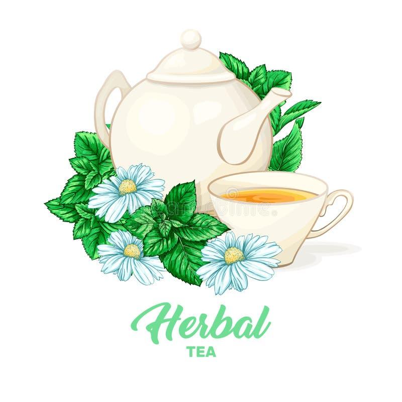 Teapot πορσελάνης και φλυτζάνι τσαγιού με το τσάι και τα φύλλα μεντών Απομονωμένος και λεπτομερής διανυσματική απεικόνιση