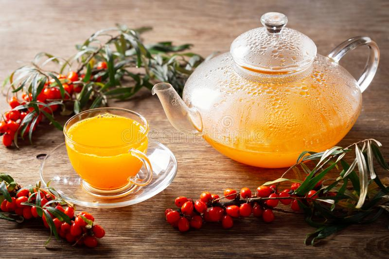 Teapot and cup of hot sea buckthorn tea with fresh berries royalty free stock photo