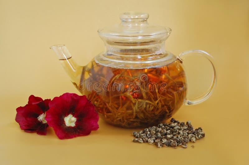 Teapot de vidro imagem de stock
