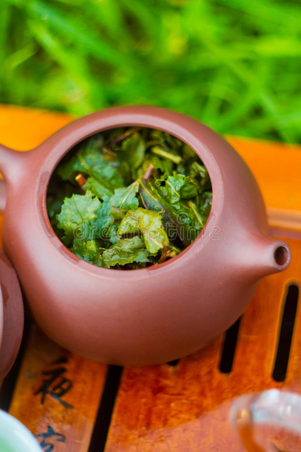 Teapot with green oolong royalty free stock photography