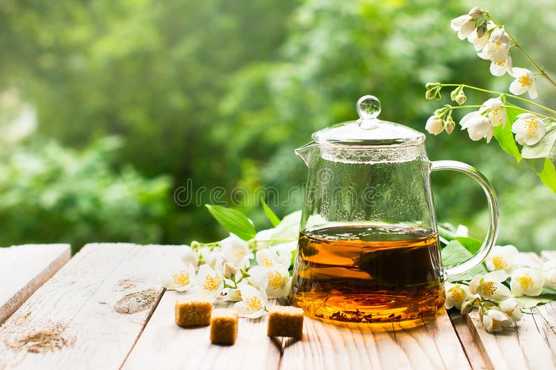 Spring flowers in a teapot stock photo  Image of gardening