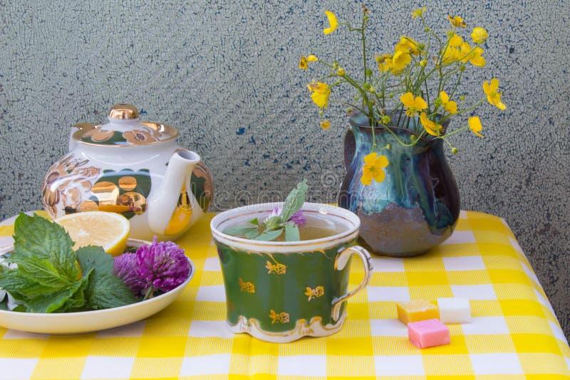 Teapot z ziołową herbatą Spodeczek z świeżymi nowymi liśćmi, koniczyna fl obraz stock