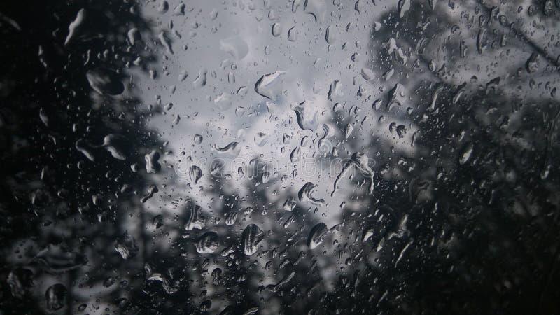 Tears Rain obrazy stock