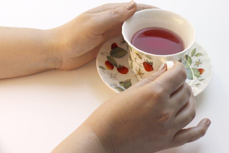 Teatime fotos de stock royalty free