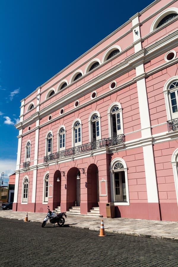 Teatro Amazonas photographie stock libre de droits