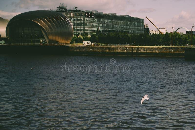 Teatro de Glasgow IMAX con la gaviota imagen de archivo libre de regalías