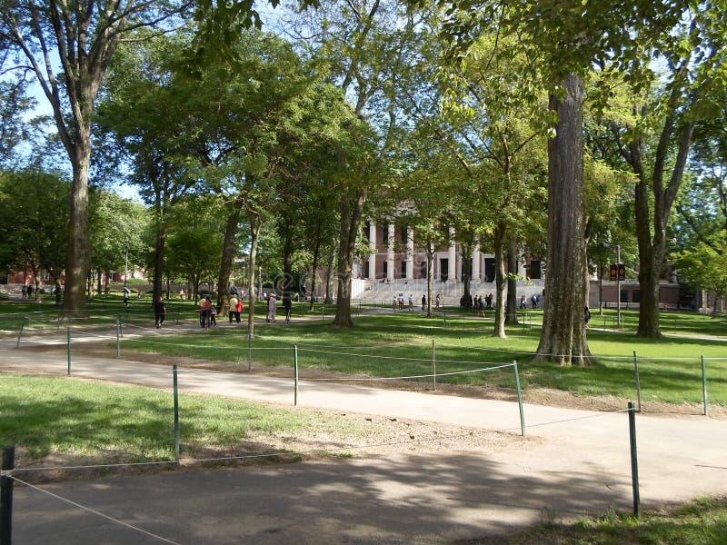 Teatro del tricentenario y biblioteca de Widener, yarda de Harvard, Universidad de Harvard, Cambridge, Massachusetts, los E.E.U.U foto de archivo