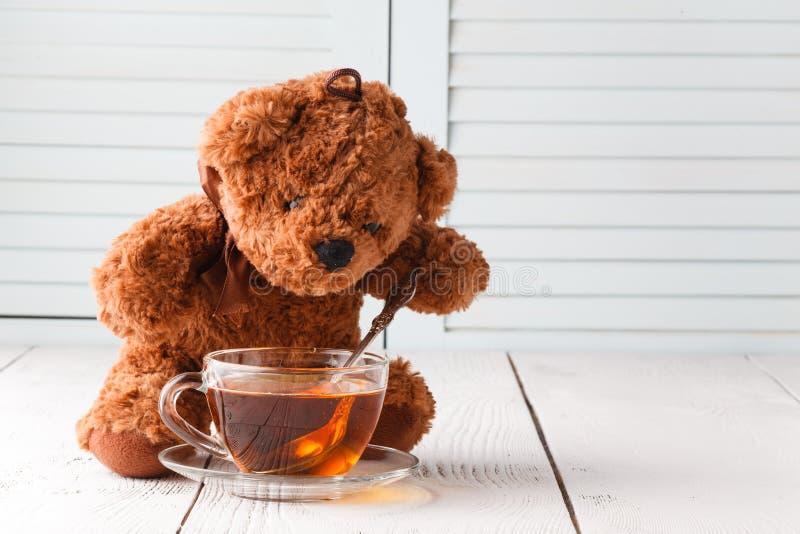 Tebjudning för nallebjörnar royaltyfria bilder
