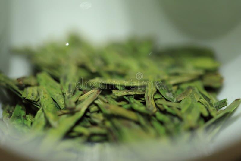 Teblad grönt te royaltyfria bilder