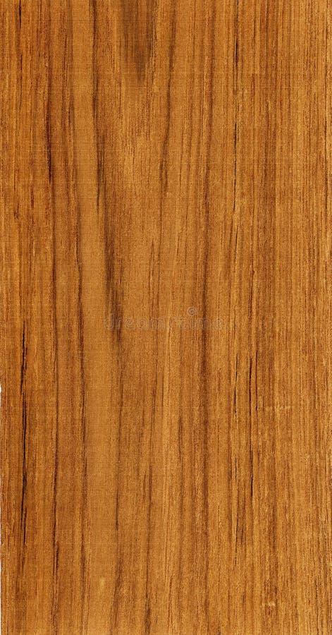 Teca de madera foto de archivo libre de regalías