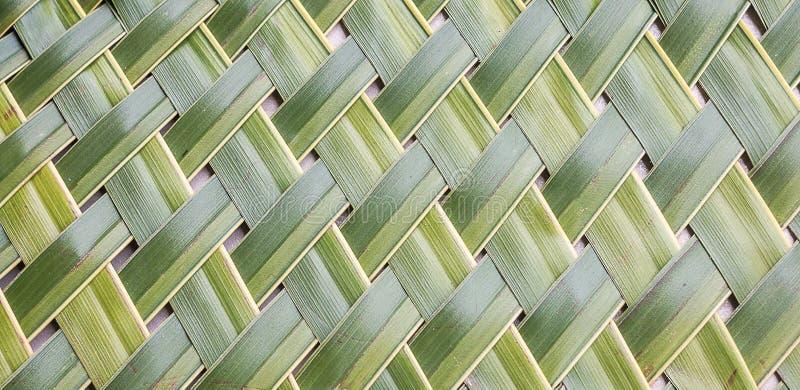 Tecelagem do teste padrão das folhas do coco foto de stock