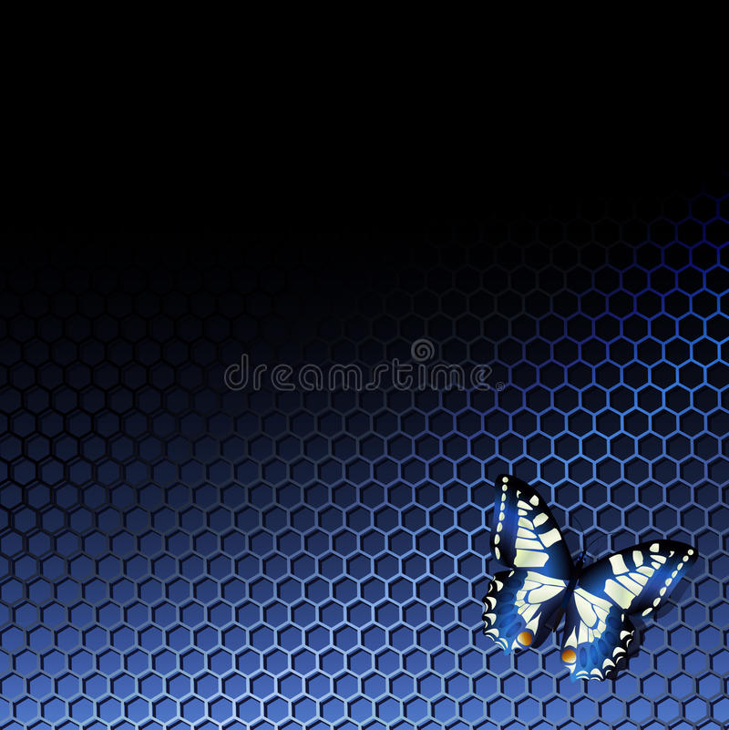 Tech background with butterfly vector illustration