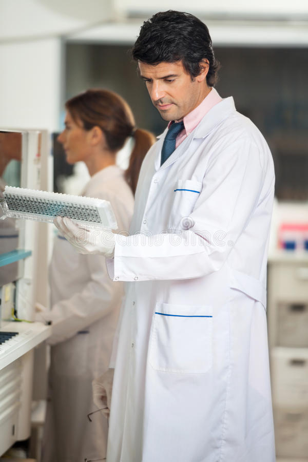 Download Technician Analyzing Samples Stock Photo - Image: 37137078