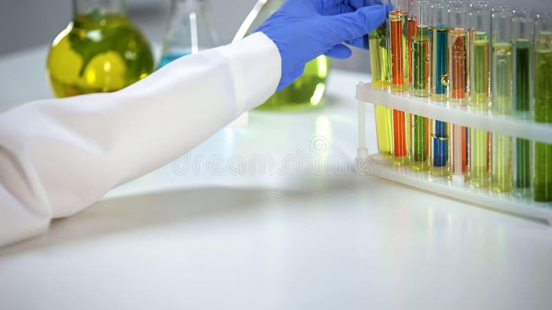 Technicien de laboratoire prenant le tube à essai avec le liquide transparent du support, extrait photographie stock libre de droits