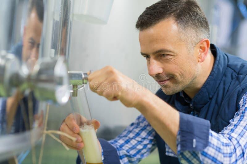 Technicien masculin prélevant l'échantillon de lait à l'usine de lait images libres de droits