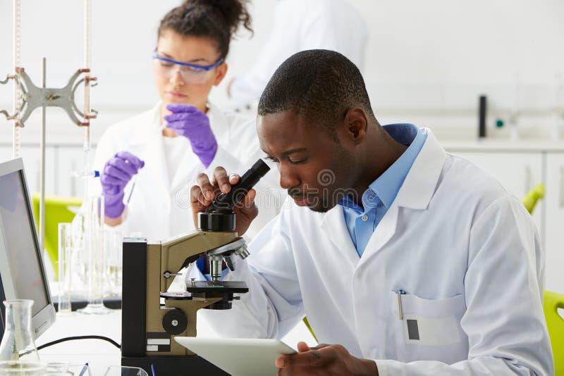 Techniciens effectuant la recherche dans le laboratoire photo stock