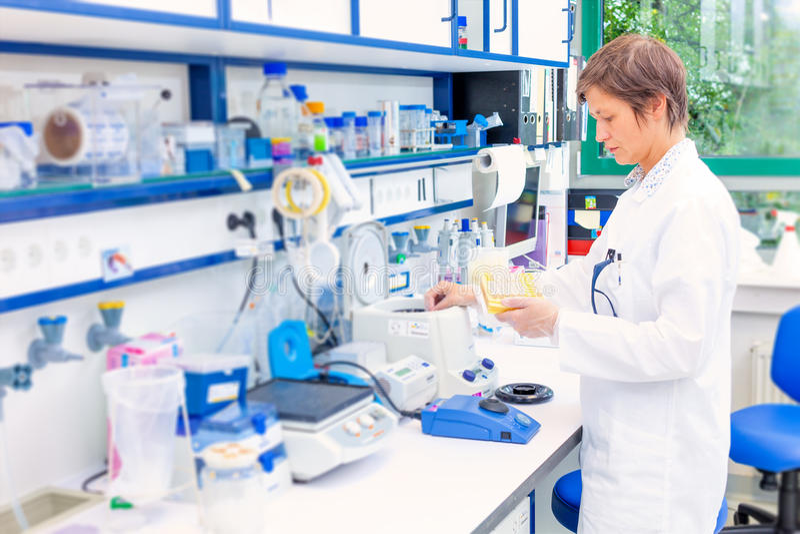Technicus in de microbiologie royalty-vrije stock fotografie