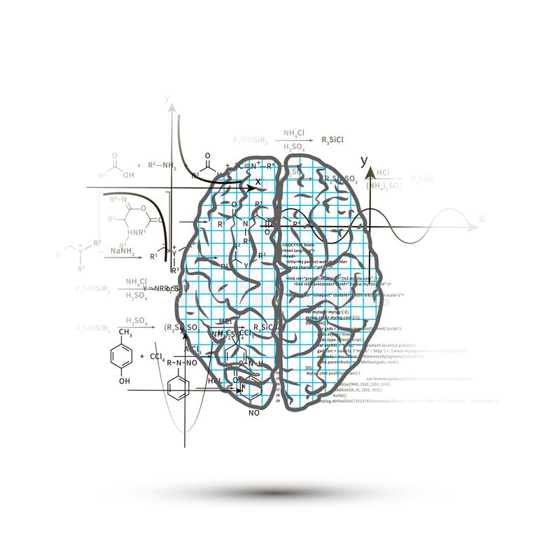 Techniczna hemisfera ludzki mózg w odgórnym widoku, prawa strona mózg funkcjonuje pojęcie odizolowywający na bielu ilustracji