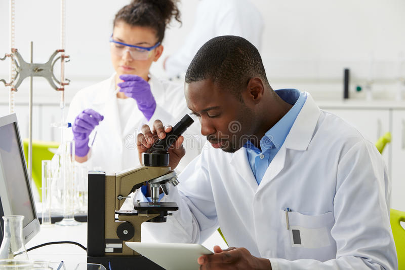Techniker, die Forschung im Labor durchführen stockfoto