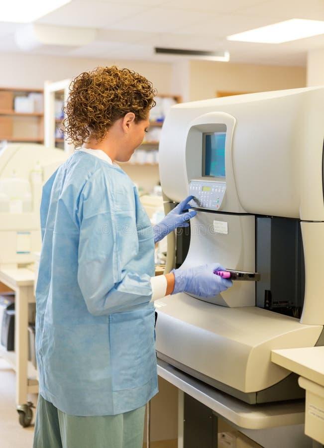 Technologie femelle de laboratoire avec des spécimens d'essai de hématologie image libre de droits