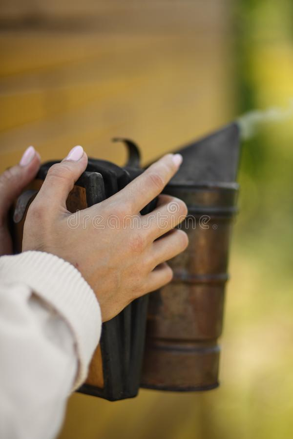 Technologie van beroking van bijen Bedwelmende rook voor veilige honingsproductie In hand de bijenroker van de imkergreep Imkerij stock afbeelding