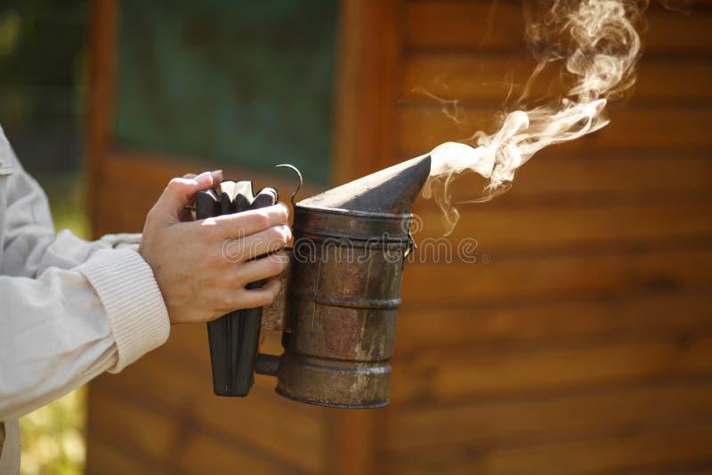 Technologie van beroking van bijen Bedwelmende rook voor veilige honingsproductie In hand de bijenroker van de imkergreep Imkerij stock foto's