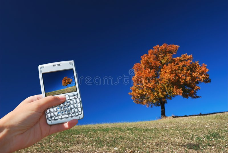 Technology and nature royalty free stock photo
