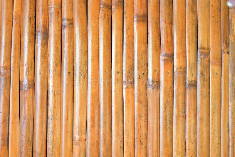 Tecidos de bambu podem ser usados para fundo e papel de parede imagens de stock