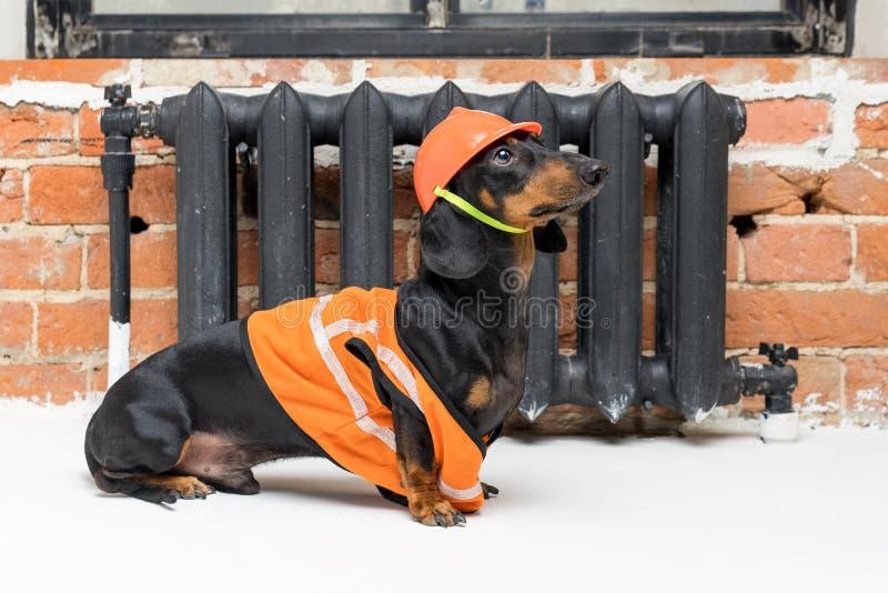 Teckel drôle de constructeur de chien dans un casque orange de construction et un gilet, contre une batterie noire de fer image libre de droits