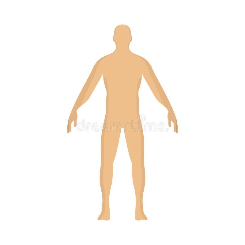 Tecken för illustration för tecknad film för manpersonvektor mänskligt Poserar den manliga lägenheten för den stående konturn Pic royaltyfri illustrationer