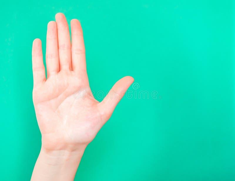 Tecken f?r handvisningstopp Använd gömma i handflatan av din hand för att visa, när du önskar något eller någon att stoppa royaltyfria bilder
